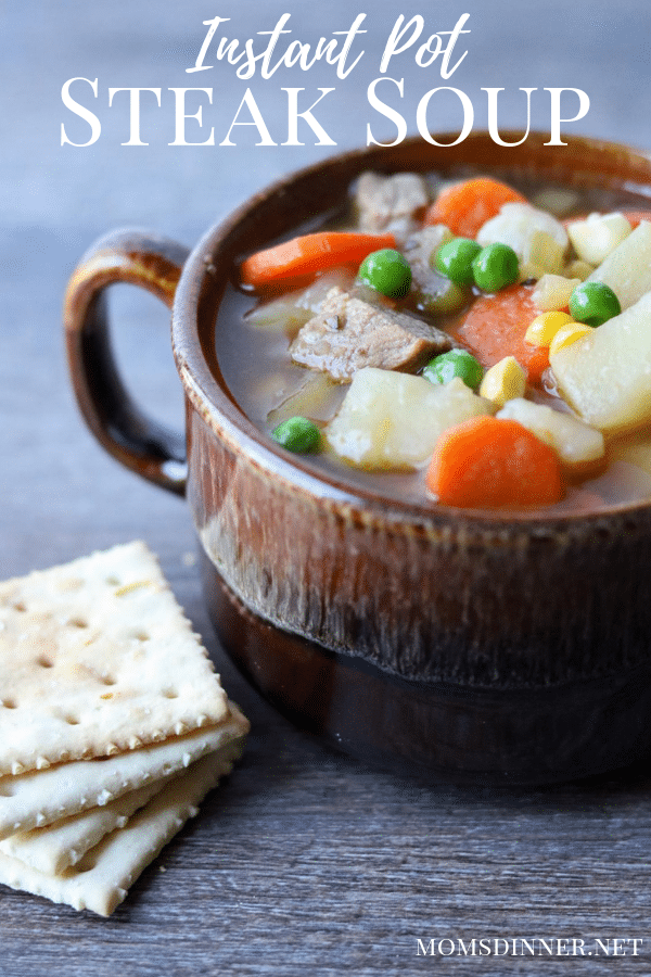 Instant Pot Steak Soup in a brown mug with saltine crackers to the side