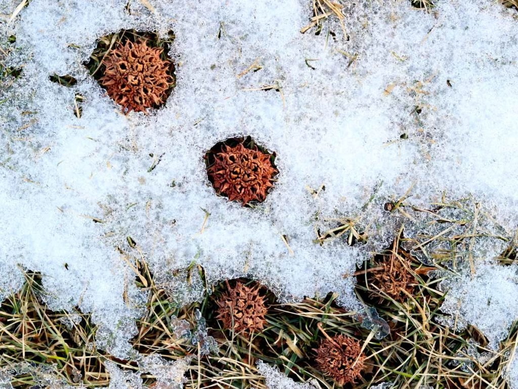 Sticky Balls in Snow