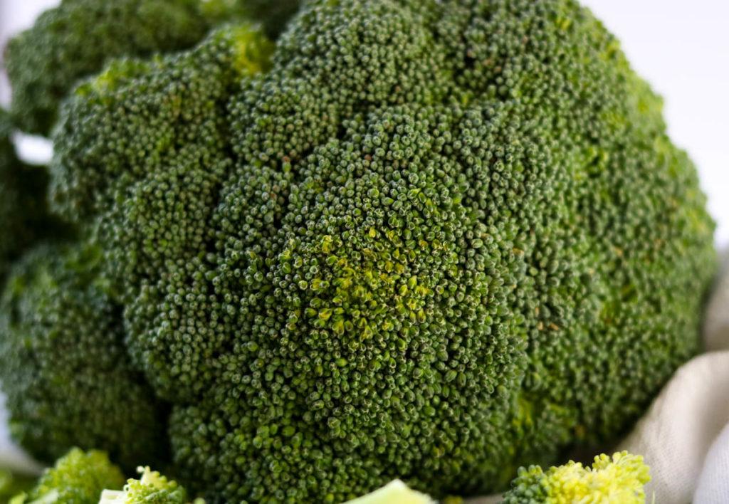 Head of Broccoli
