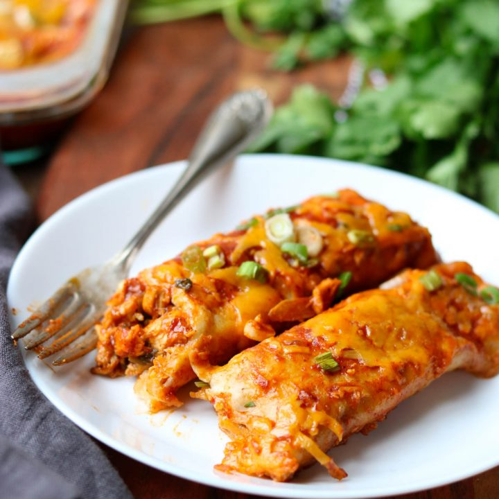 Favorite Chicken Enchilada Recipe momsdinner.net