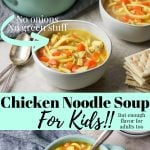 Chicken noodle soup in a bowl - pinterest image