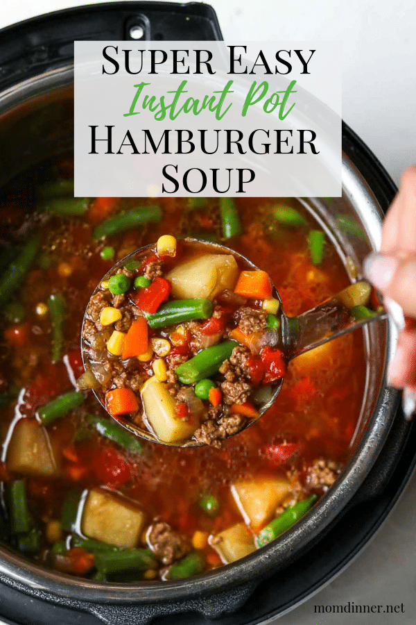 Easy Instant Pot Hamburger Soup Pinterest Image