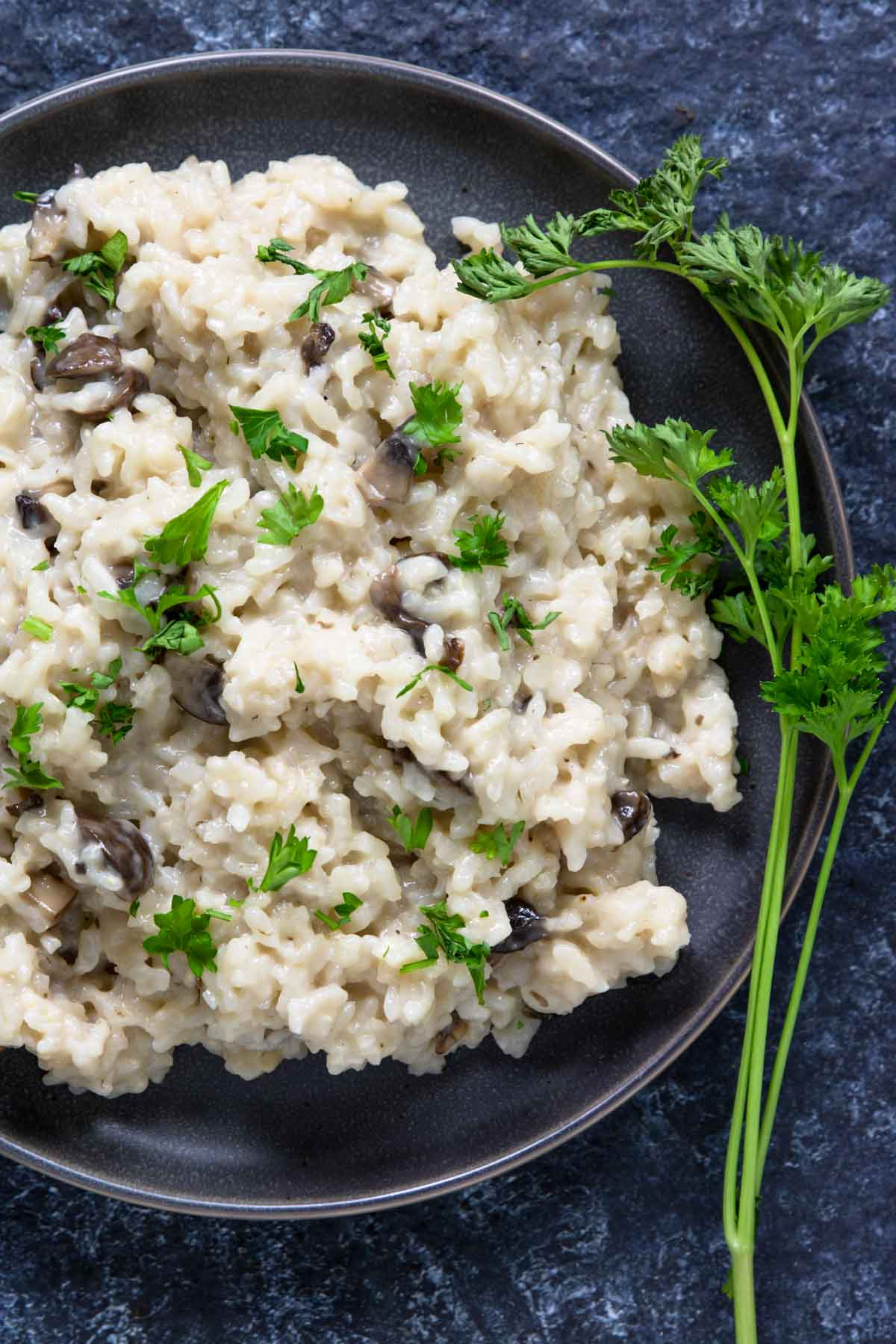 A plate of mushroom risotto with sprigs of parsley to the side