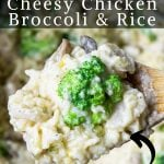 Instant Pot Chicken and Rice on a spoon with pinterest text